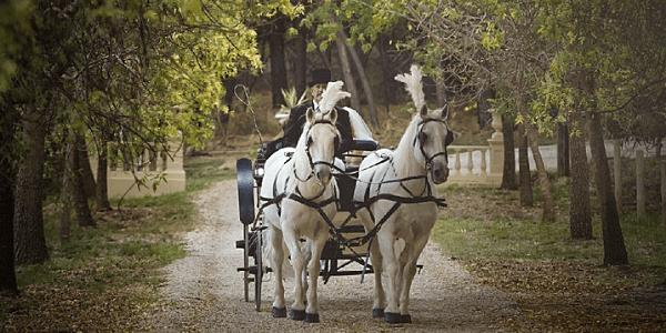 Wedding Venue McLaren Vale South Australia – Manor Estate Winery